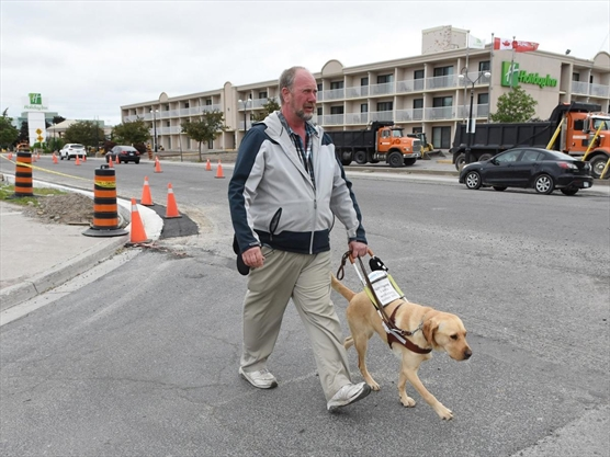 Guide dog discrimination is illegal but it's still happening