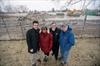 Kipling Grove demolition