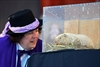 Canadian groundhogs 'predict' early spring-Image2