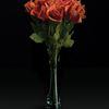 Dorito roses