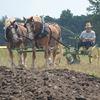 Simcoe County Plowing Match 2016