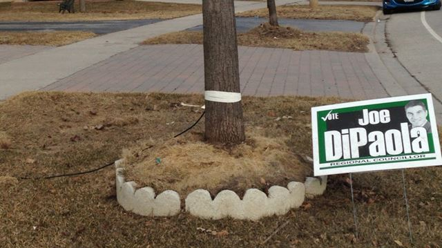 Lonely campaign sign still stands
