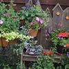 Horticultural society seeking new leadership