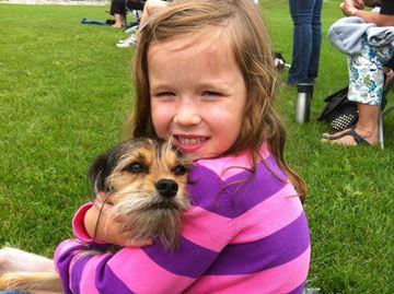 Community bands together to find missing dog in Oakville