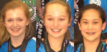 Oakville trio helps Halton to provincial volleyball silver