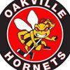 Oakville Hornets