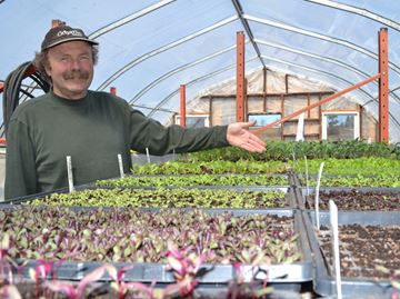 Organic designations can be tough to navigate for Simcoe County farmers