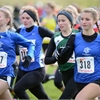 OFSAA cross country