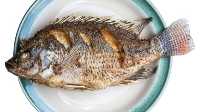 Eat these foods to add years to your life for Cod fish mercury