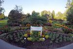 Oakville's Shell Park wins gardening award