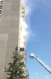 Dog rescued in high-rise fire– Image 1