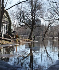 The Rideau River flooded parts of Old Ottawa South, including submerging the corner of Rideau River Drive and Belmont Avenue. For the full story turn to page 6.