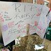 Murder victim memorial