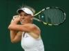 Tennis star Wozniacki to run NYC Marathon-Image1