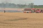 Field fire on Wellington Road 109