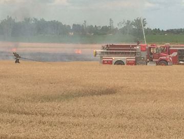 Field fire on Wellington Road 109