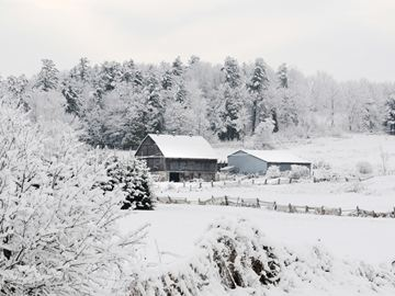 GRAFTON -- Snow covered much of Northumberland in the morning of Nov. 27, creating a beautiful scene for this farm north of Grafton. November 27, 2013.