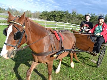 Simcoe County Carriage Driving for the Disabled