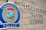 Reward offered in O'ville cat killer case