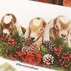 Get your goat... calendar