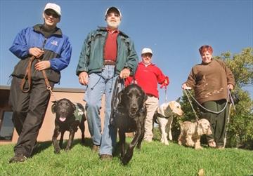 Dog guides walk