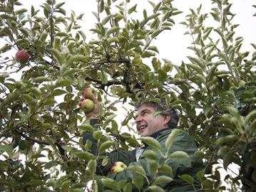25 years of donating apples for Burlington company