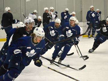 Maple Leafs in Collingwood