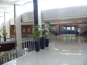 Hamilton council chambers