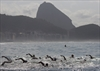 Sailing chief: Rio events could be moved from polluted bay-Image1