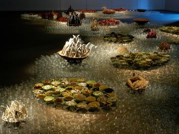 Shoalwan: River Through Fire, River of Ice (2003)