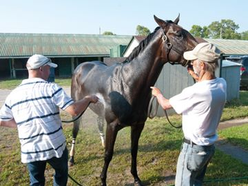 Prince of Wales contenders arrive in Fort Erie