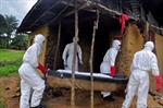 No visas for Ebola countries: Canada-Image1