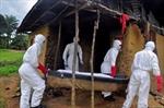 No visas for Ebola countries: Canada-Image1