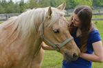 Horse Rescue Ontario saddles up for annual open house at Ofield Road property