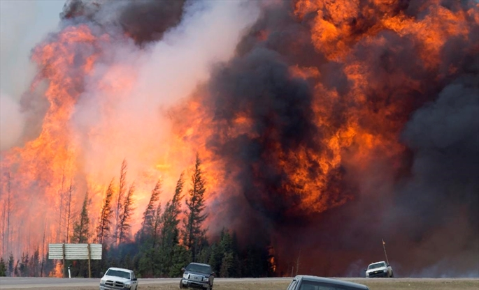 Waterloo professor says artificial intelligence is a useful tool to help fight wildfires