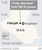 A look at Iraq's war against IS after Fallujah-Image1