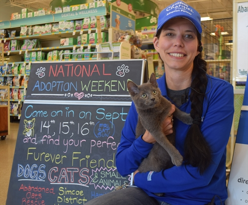 Upper Stoney Creek PetSmart helped find homes for 70 animals in need