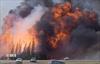 Climate change raises forest fire risk: Report-Image1