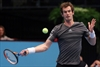 Murray defeats Troicki to reach final in Vienna-Image1