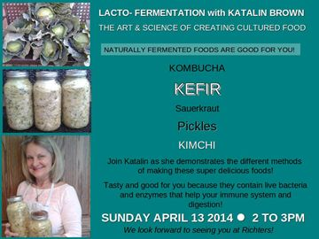 LACTO-FERMENTATION, THE SECRET TO HEALING