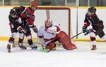 Bantam Bears Action Nov. 15
