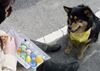 National Service Dog's annual Easter Egg Hunt