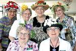 Spring bonnets