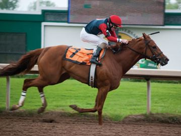 Fort Erie Race Track expands 2015 race calendar