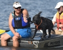 Water dog trials
