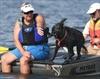 Water dog trials