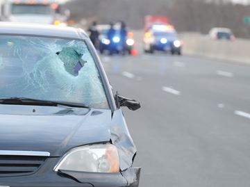 Pedestrian hit on Hwy. 401