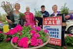 Flower Sale in Glen Williams