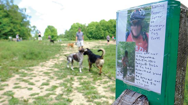 Dog Park Spray