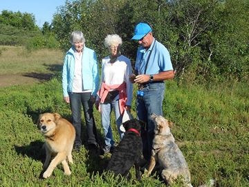 Clean up day for Stittsville dog park